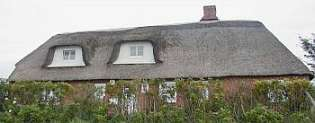 rott spott das reetdach schimmelpilz feuchte zum reetdachsterben dach 9. Black Bedroom Furniture Sets. Home Design Ideas