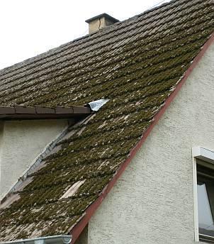 dachziegel lassen wasser durch
