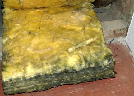 kalziumsilikatplatten d mmstoff schwindel d mmung dach nass schimmel pilz schwarzschimmel befall. Black Bedroom Furniture Sets. Home Design Ideas