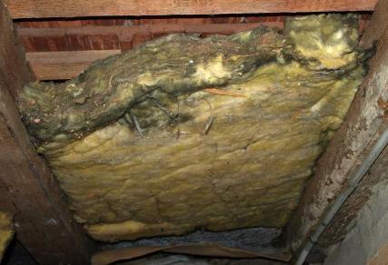 Interessant Kalziumsilikatplatten+Dämmstoff-Schwindel, Dämmung Dach nass+  BN09