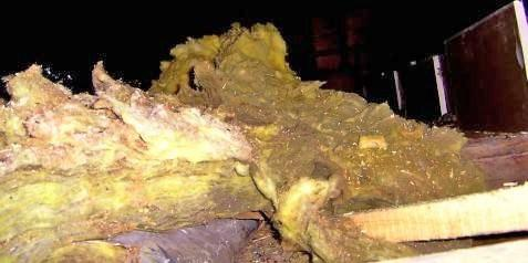 Mouldy mineral wool in an attic
