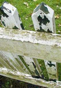 Synthetic resin coating on weathered wooden fence - cracked very fast