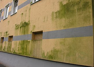 Grünalgen auf Wärmedämmverbundsystem, Verschmutzt Green Algue & Rotten Damp Wet ETICS - External Thermal Insulation Composite Systems / External Wall Insulation